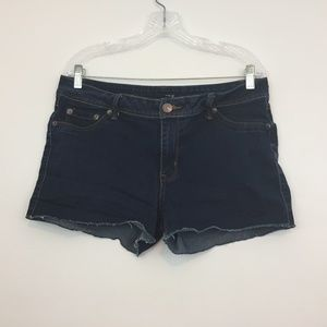 Ana Women's Jeans Shorts Size 12  CUT OFF Stretch